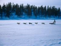wie am Yukon :)